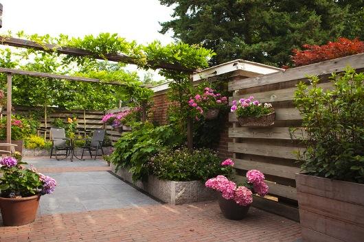 Tuinrenovatie tuin