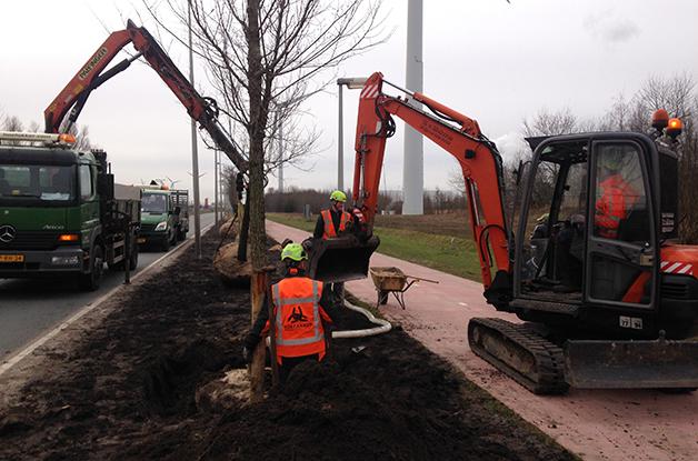 Aanplant bomen 31 stuks Acer campestre 'William Caldwell' Donauweg Amsterdam (3) 628
