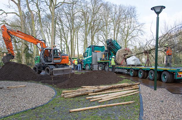 Aanplant grote boom Park Randebroek Amersfoort (1) 628