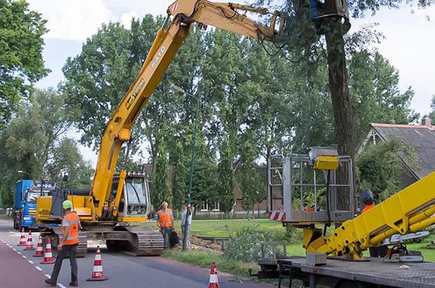 Machinaal vellen van bomen Gemeente De Bilt (3) 628