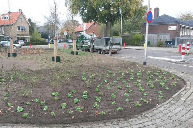 Renovatie groenvak gemeente Zeist2 628