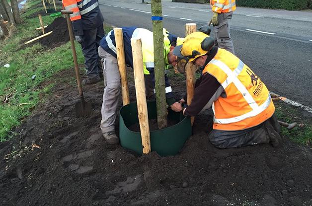 Uniek boomproject gemeente De Bilt2 628