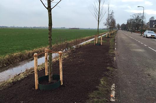 Uniek boomproject gemeente De Bilt3 530