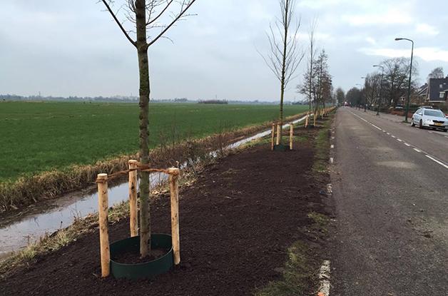 Uniek boomproject gemeente De Bilt3 628