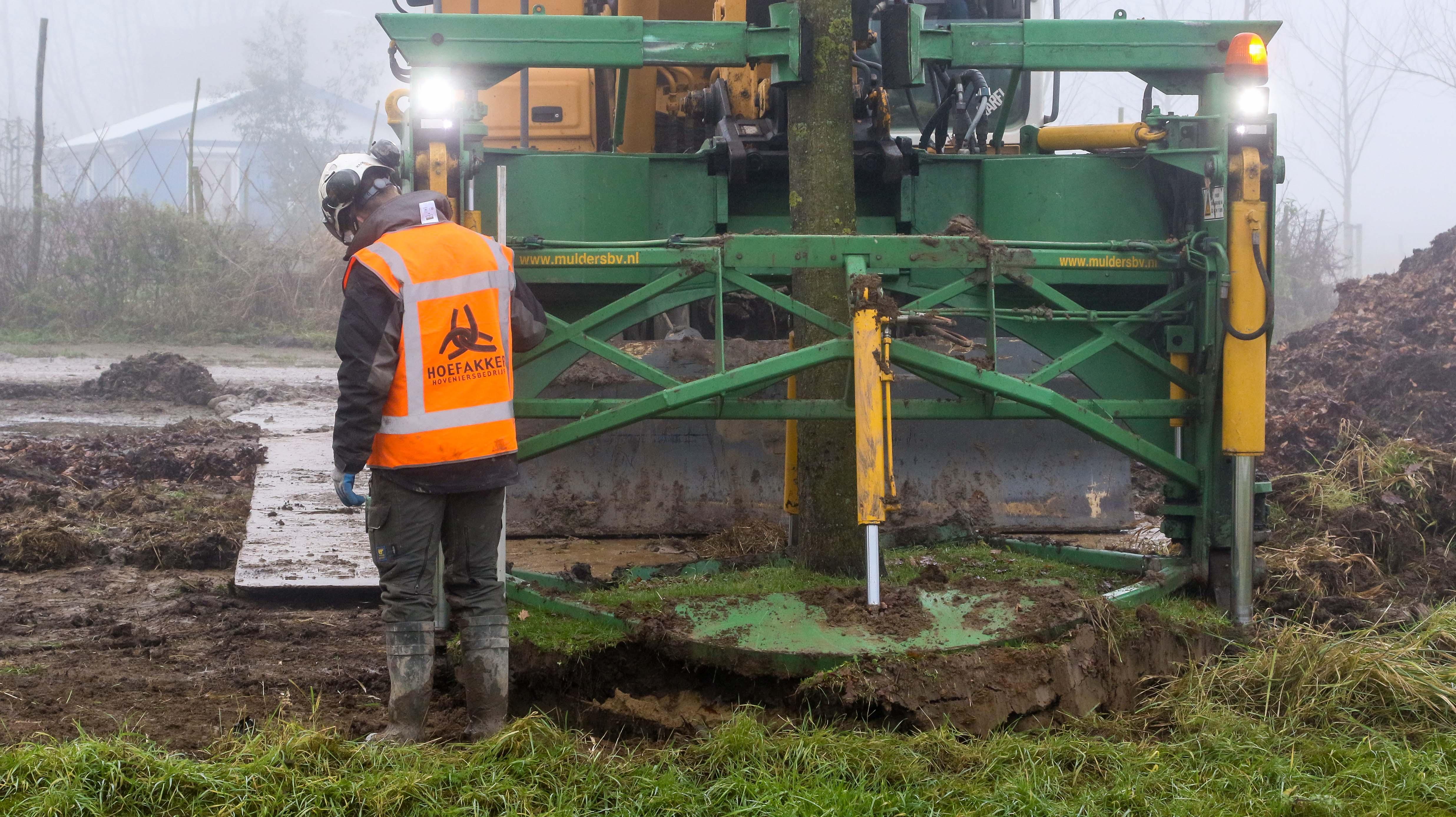 Hoefakker bomen verplaatsen Arnhem (10)