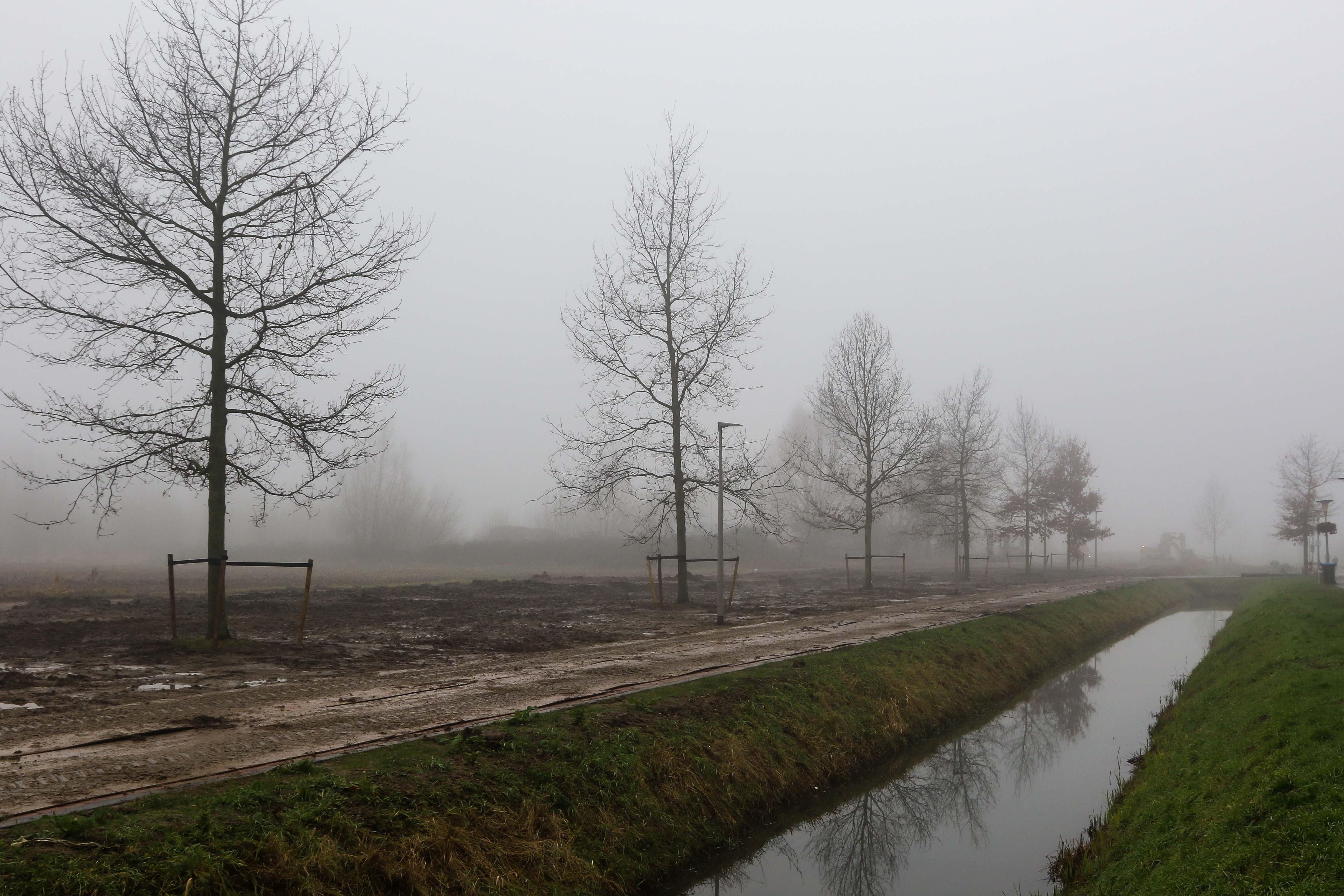 Hoefakker bomen verplaatsen Arnhem (14)