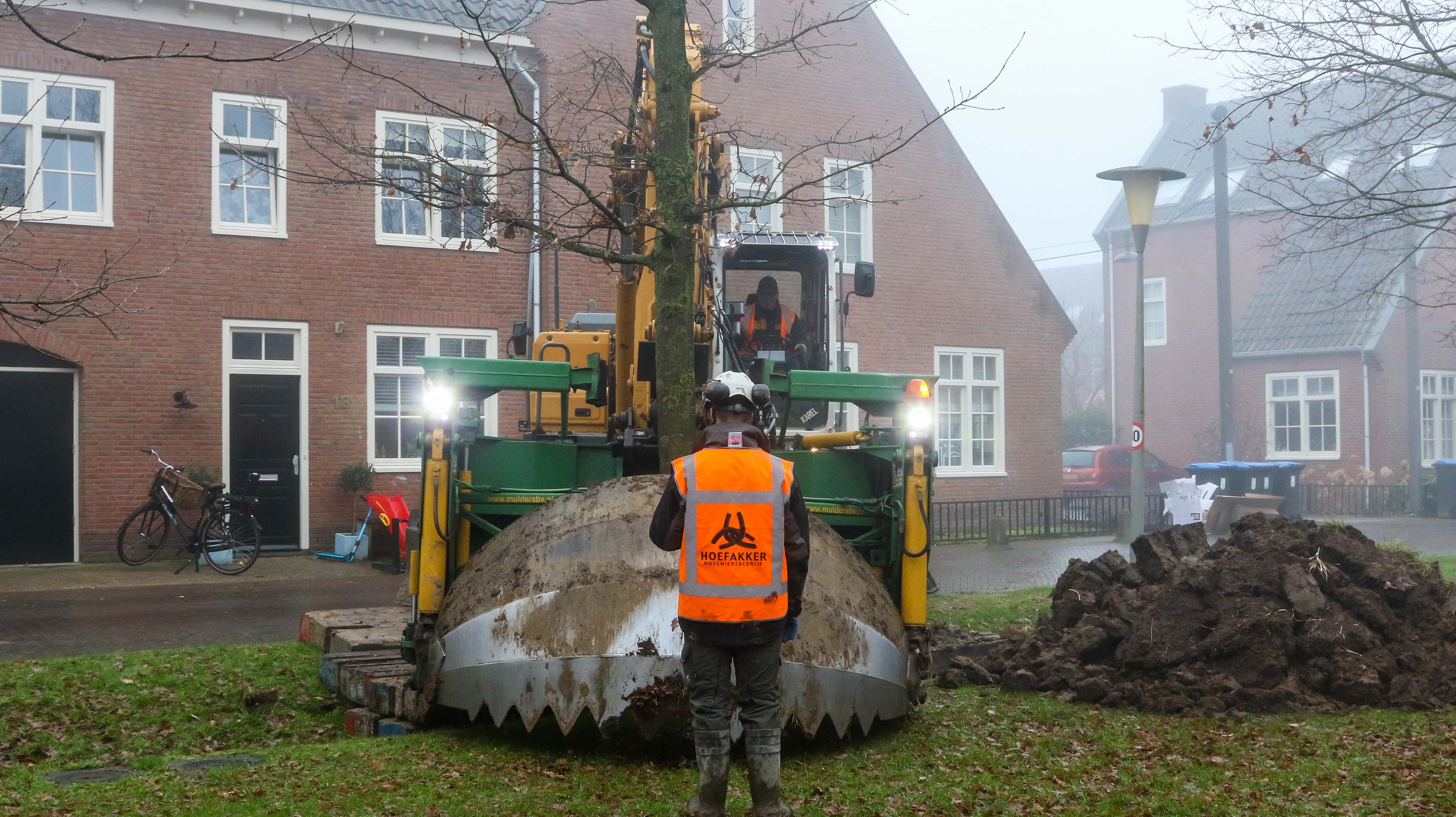 Hoefakker bomen verplaatsen Arnhem (3)