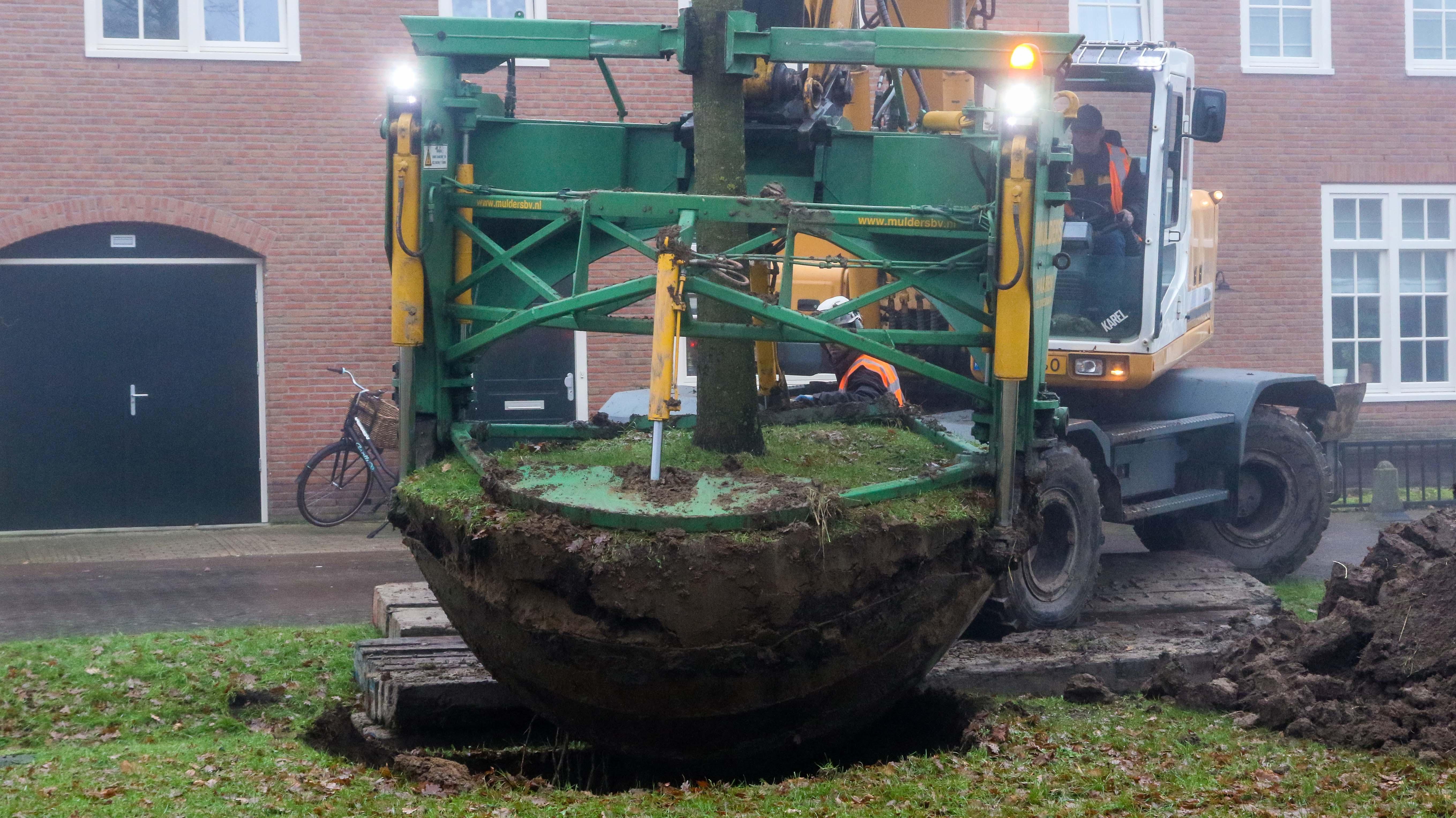 Hoefakker bomen verplaatsen Arnhem (6)