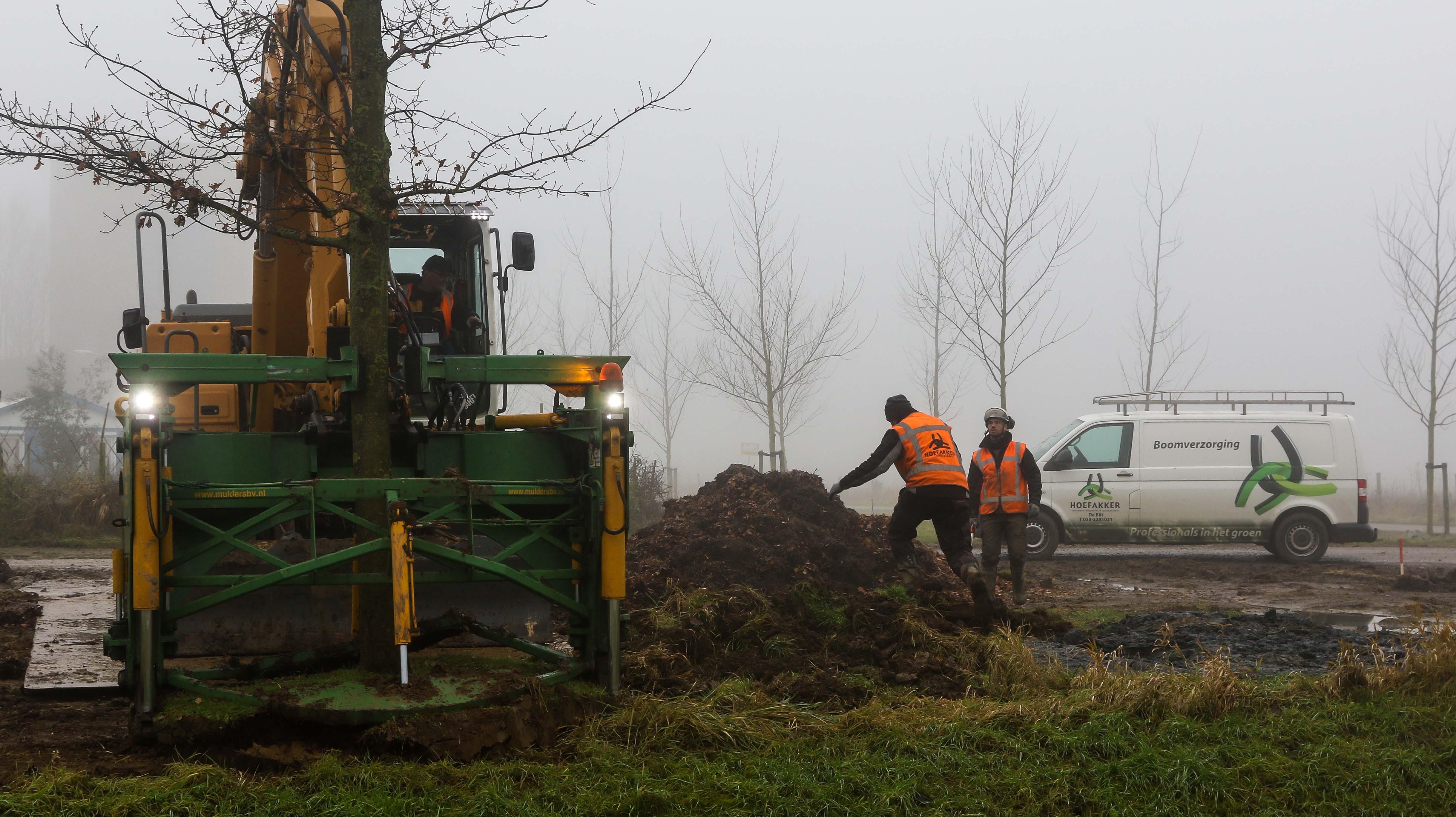 Hoefakker bomen verplaatsen Arnhem (9)
