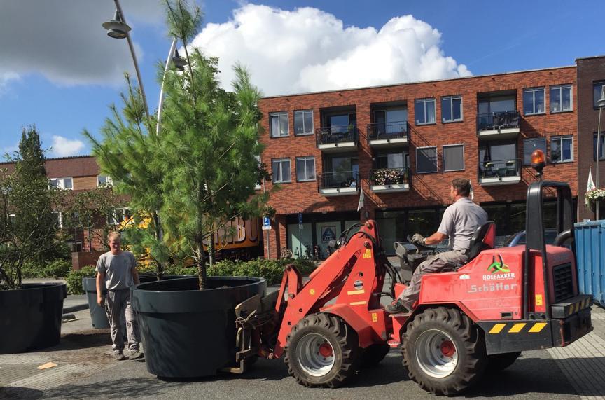 Hoefakker boomspecialisten boombakken Amersfoort (1) m