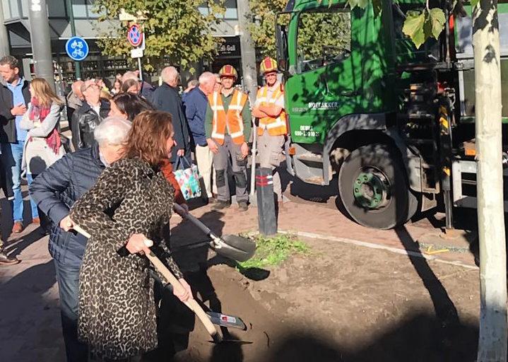 Hoefakker boomspecialisten nieuwe bomen voor vernieuwde 1e Hogeweg Zeist (2) m
