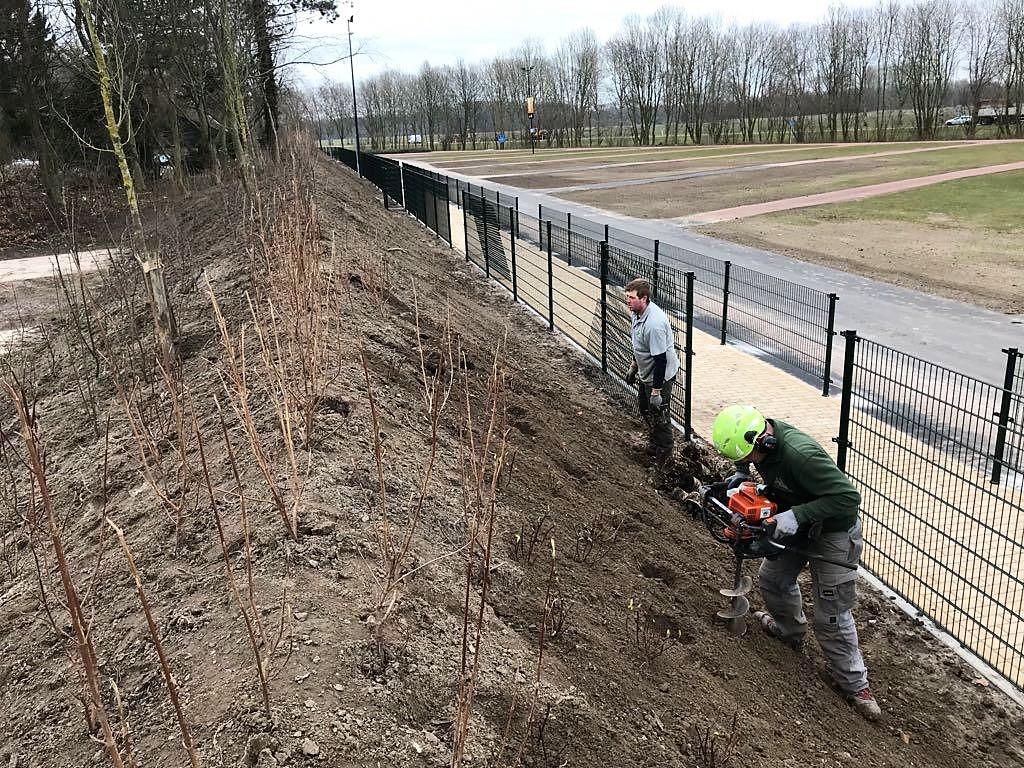 Hoefakker buitenruimte Walibi 3 bomen verplanten en nieuwe grondwal ingericht met beplanting (1)
