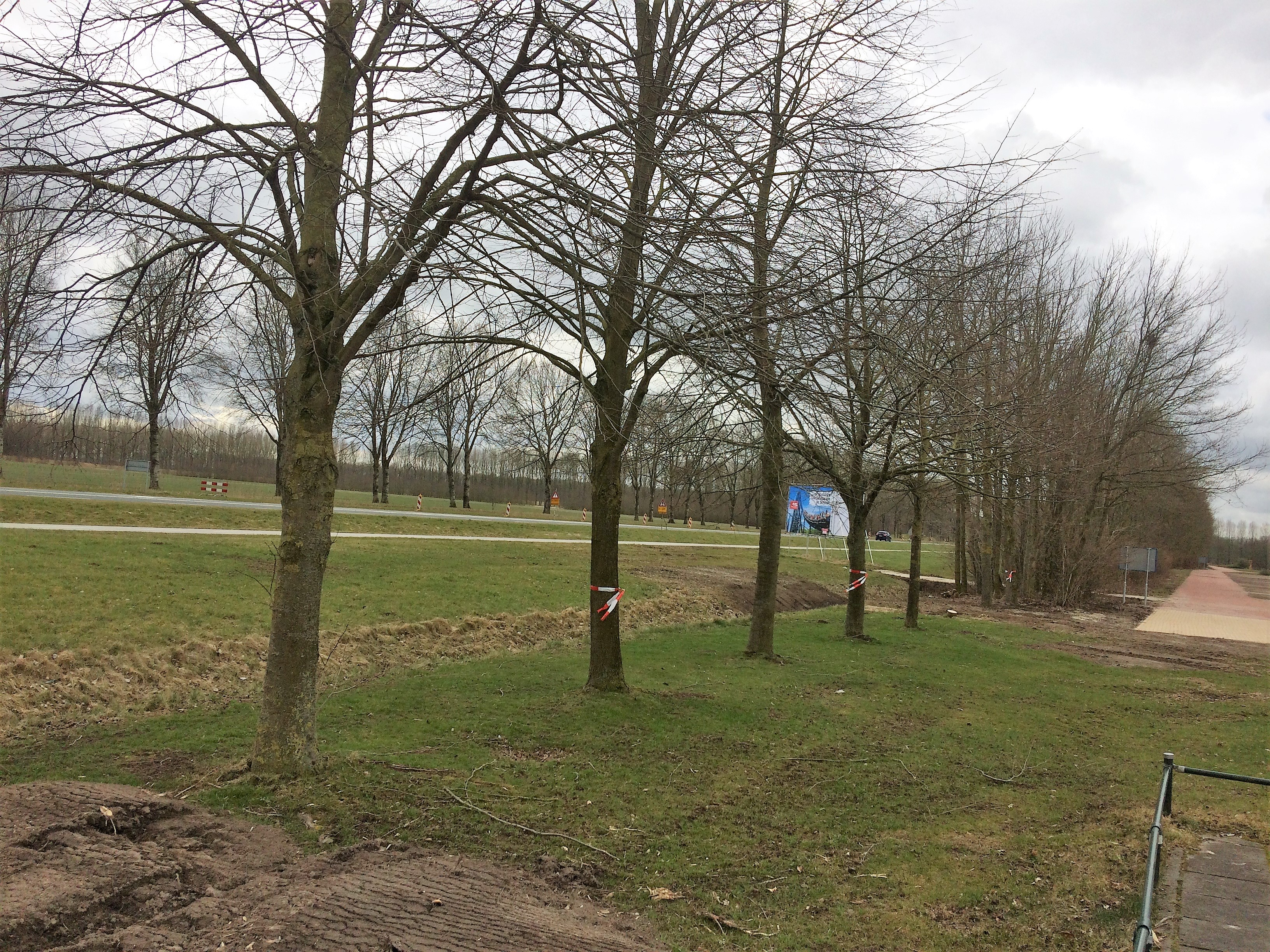 Hoefakker buitenruimte Walibi 3 bomen verplanten en nieuwe grondwal ingericht met beplanting (3)