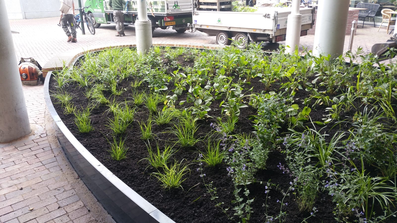 Hoefakker buitenruimte beplantingsplan cortenstalen bak Hilversum (4)