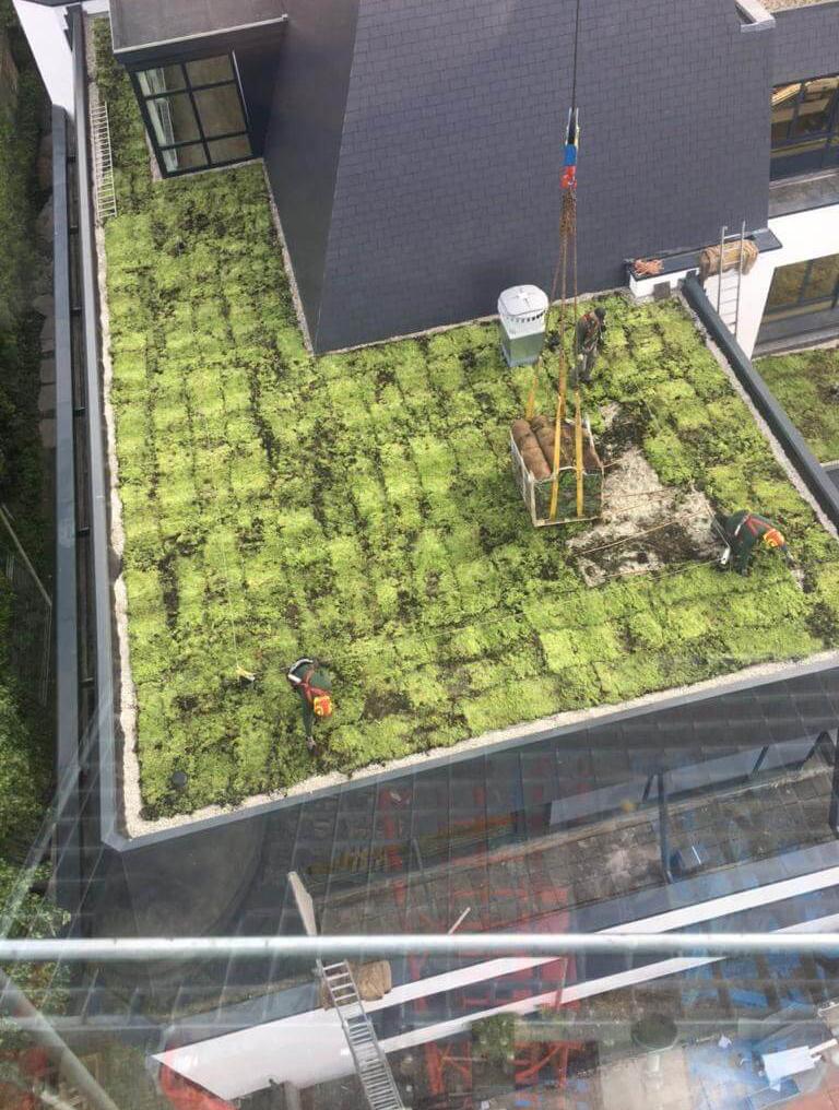 Hoefakker buitenruimte groene daken Claris Zorgvilla Steinenburgh De Bilt (3) m