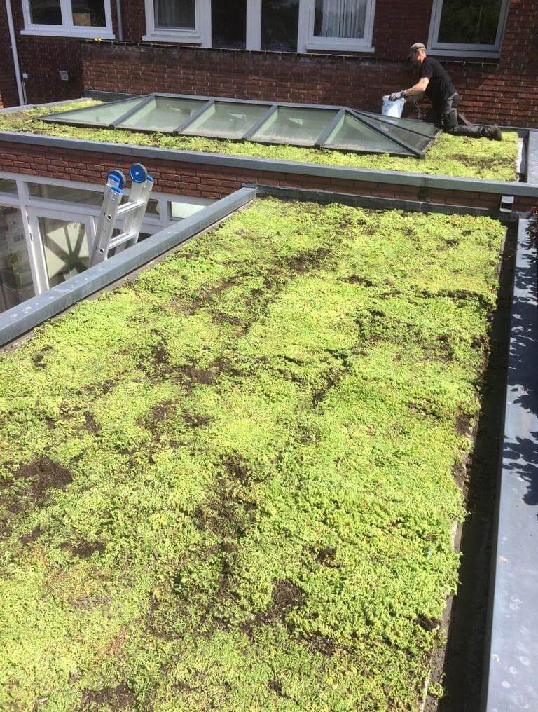 Hoefakker buitenruimte groene daken Claris Zorgvilla Steinenburgh De Bilt (7) m