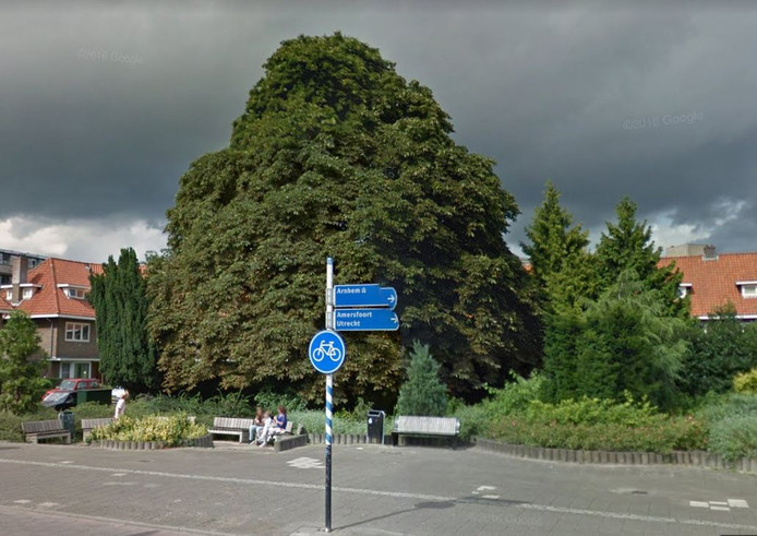 Oude situatie Hogewegplantsoen en monumentale boom Zeist bron Google Streetview