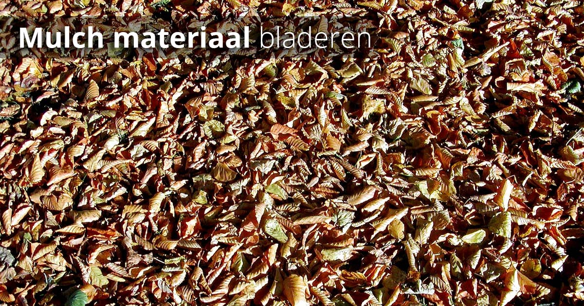 Hoefakker Tuinonderhoud oktober soorten mulch2 bladeren