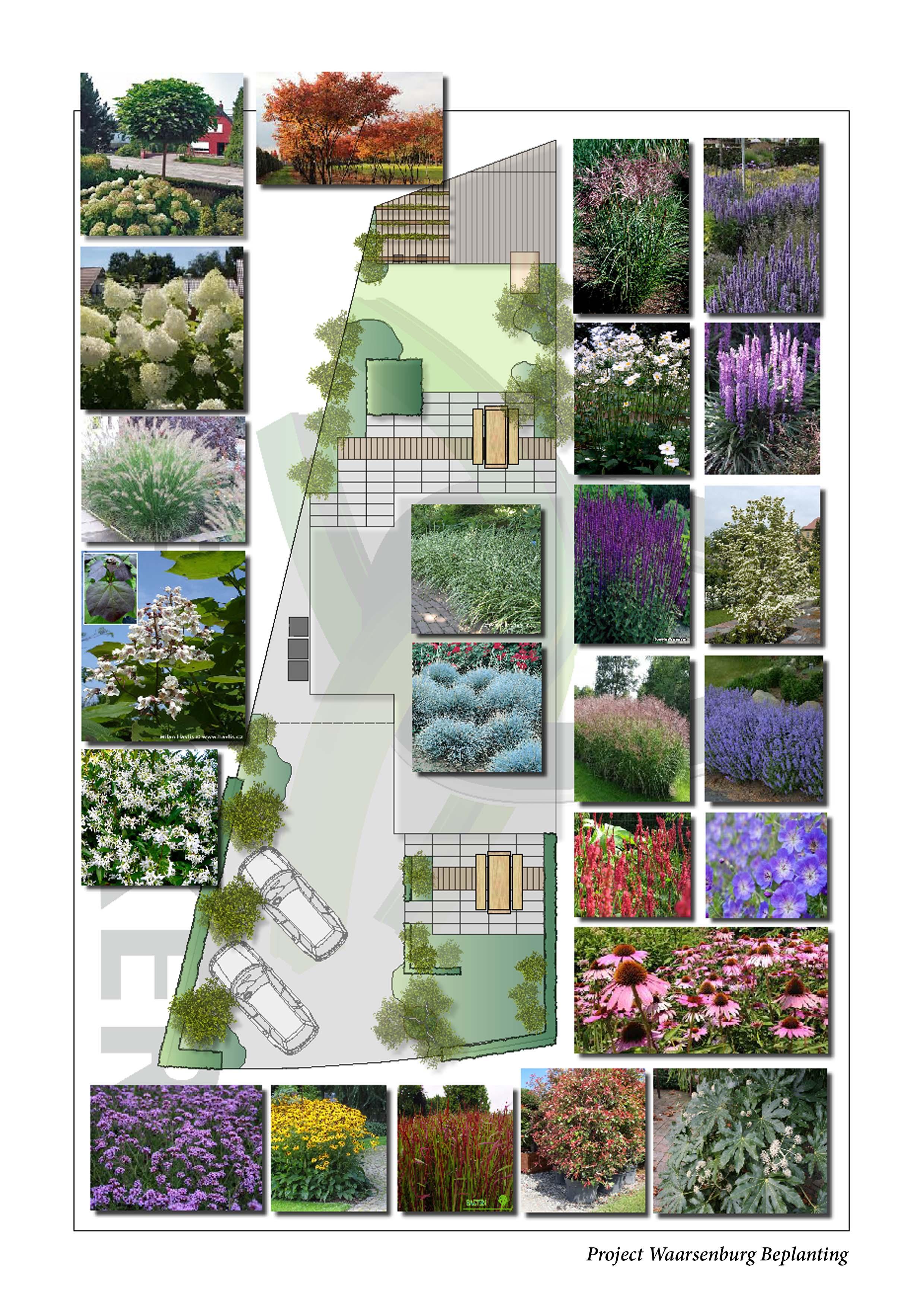 Hoefakker Hoveniers Project Waarsenburg beplanting