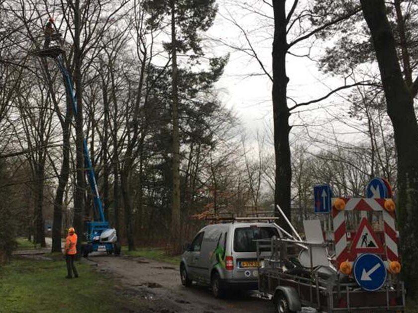 Hoefakker boomspecialisten - snoeiwerkzaamheden hoge bomen landgoed Valkenheide Maarsbergen 20-02-17 (1)
