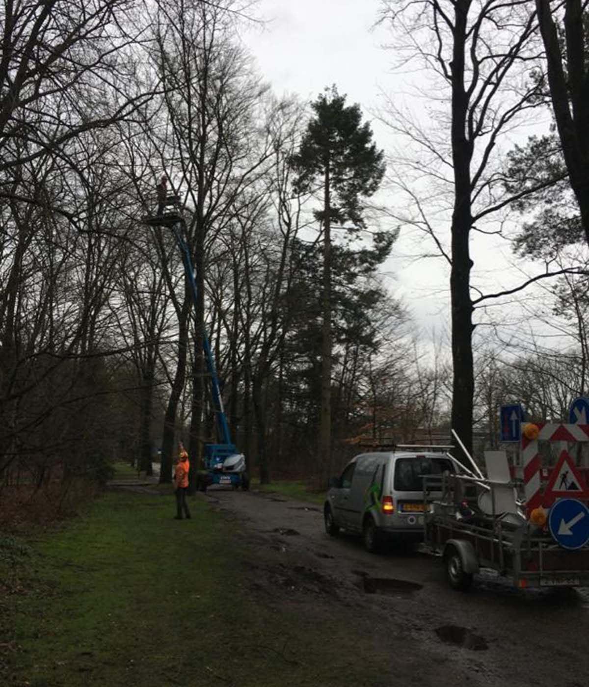 Hoefakker boomspecialisten - snoeiwerkzaamheden hoge bomen landgoed Valkenheide Maarsbergen 20-02-17 (2)