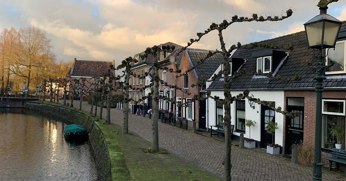Hoefakker boomspecialisten 161 leibomen snoeien Nieuwegein 1