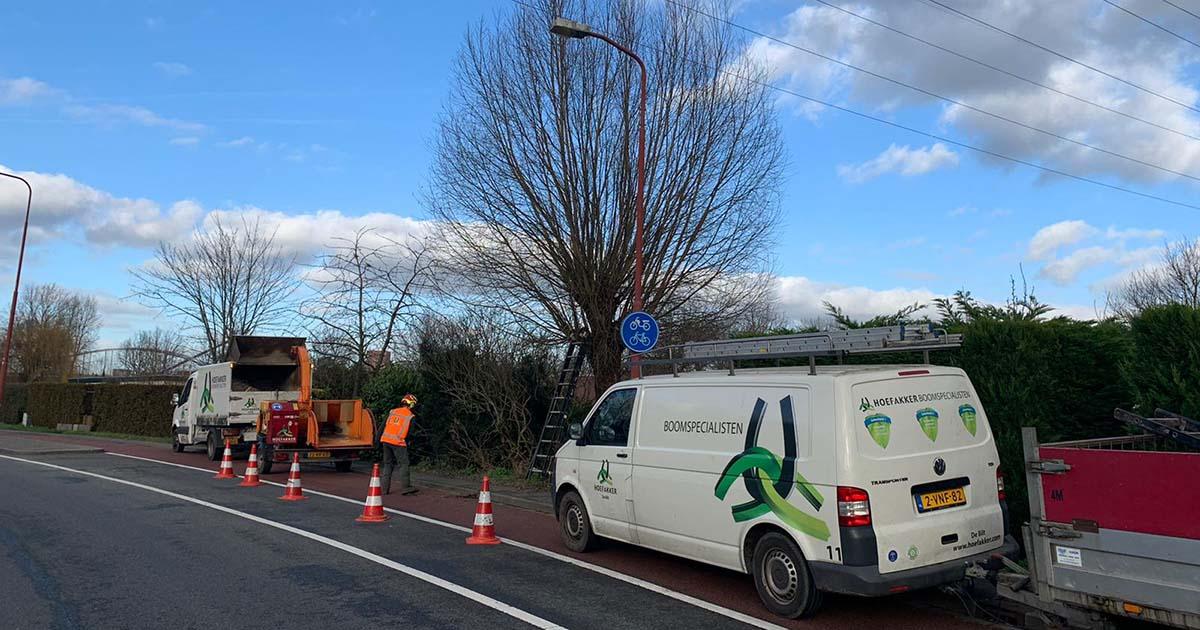 Hoefakker boomspecialisten 842 knotbomen snoeien Nieuwegein