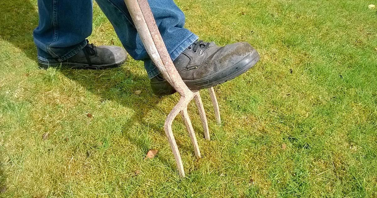 Hoefakker tuinonderhoud april gazon verticuteren voorbereiding2