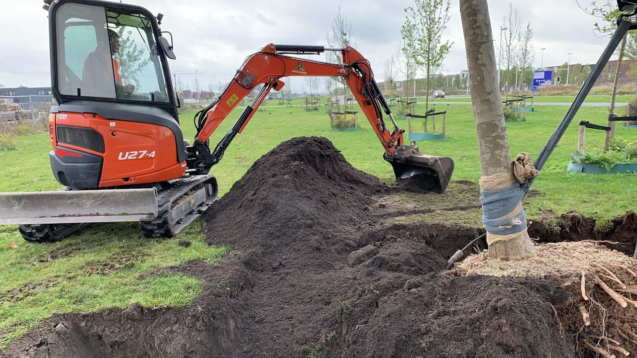 Hoefakker boomverplanting Gemeente Utrecht Berlijnplein (1)