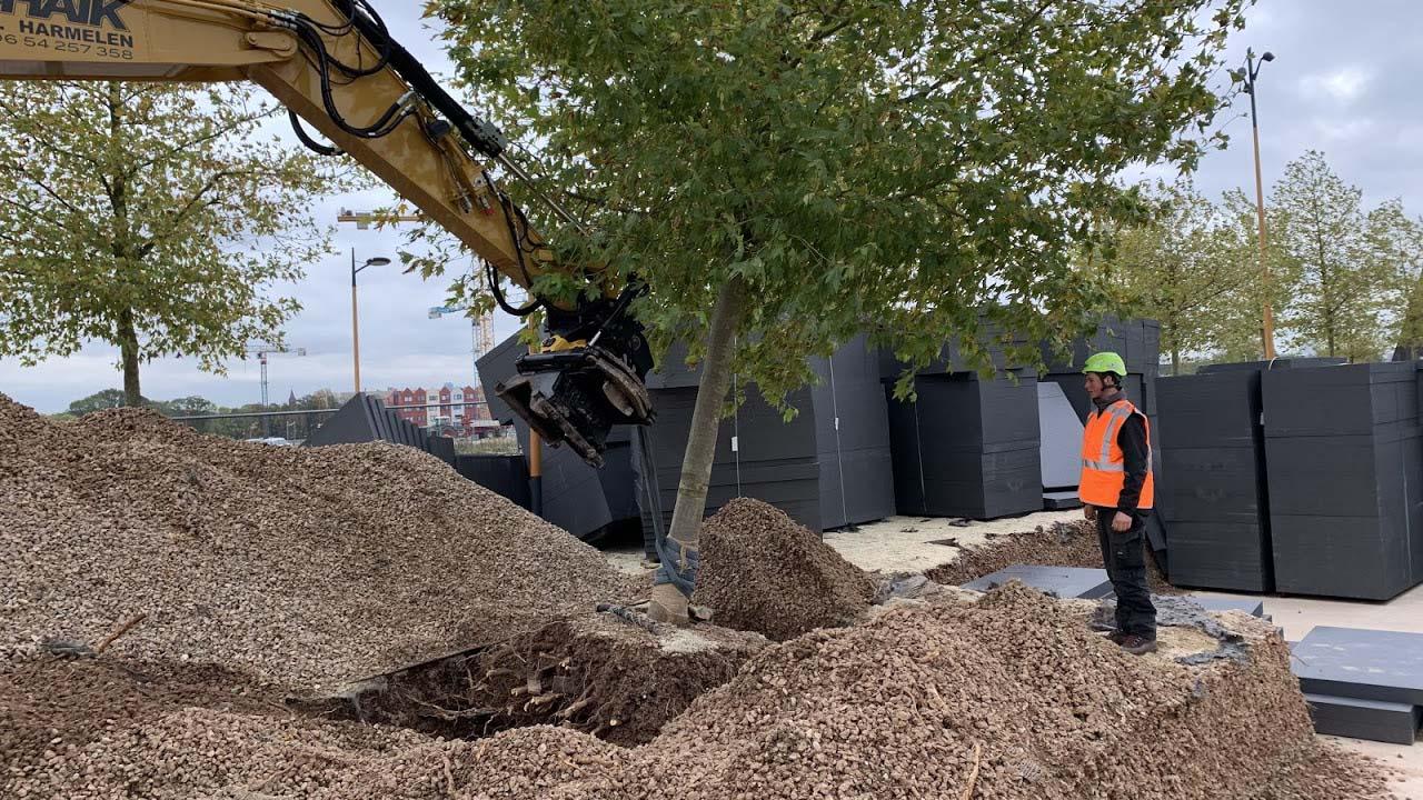 Hoefakker boomverplanting Gemeente Utrecht Berlijnplein (2)