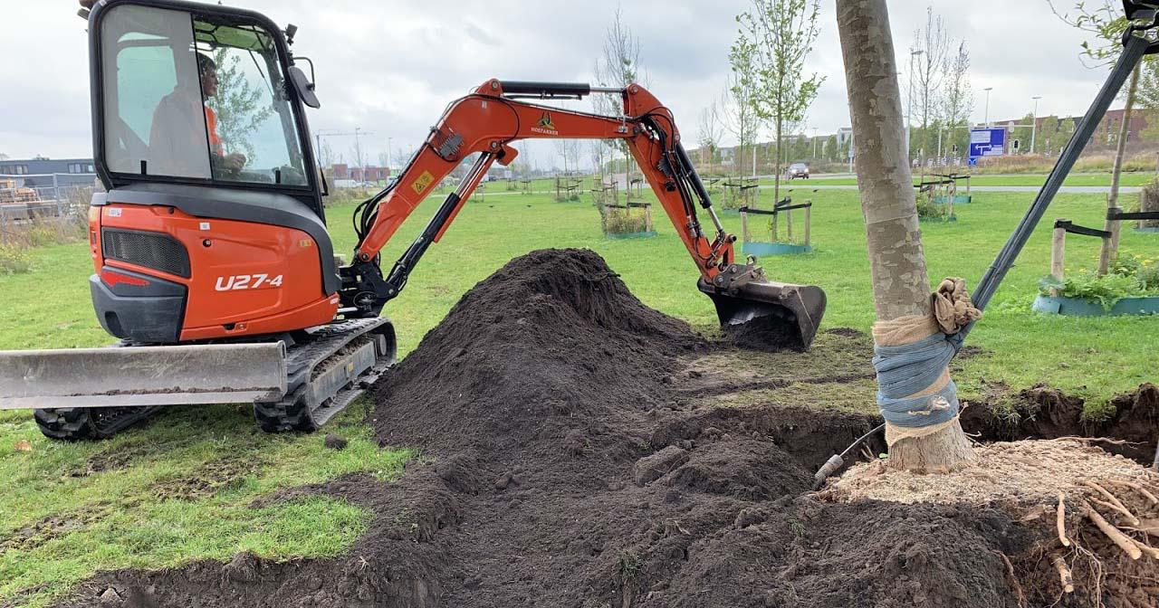 Hoefakker boomverplanting Gemeente Utrecht Berlijnplein